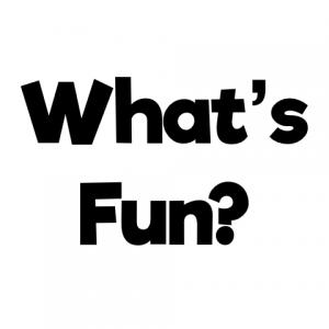 Evolution of Fun